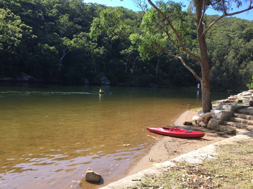 Kayaking in royal national park